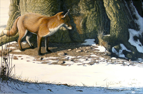Winter Sun - Fox and Wood Mouse
