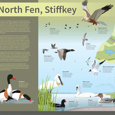 wildlife interpretation board